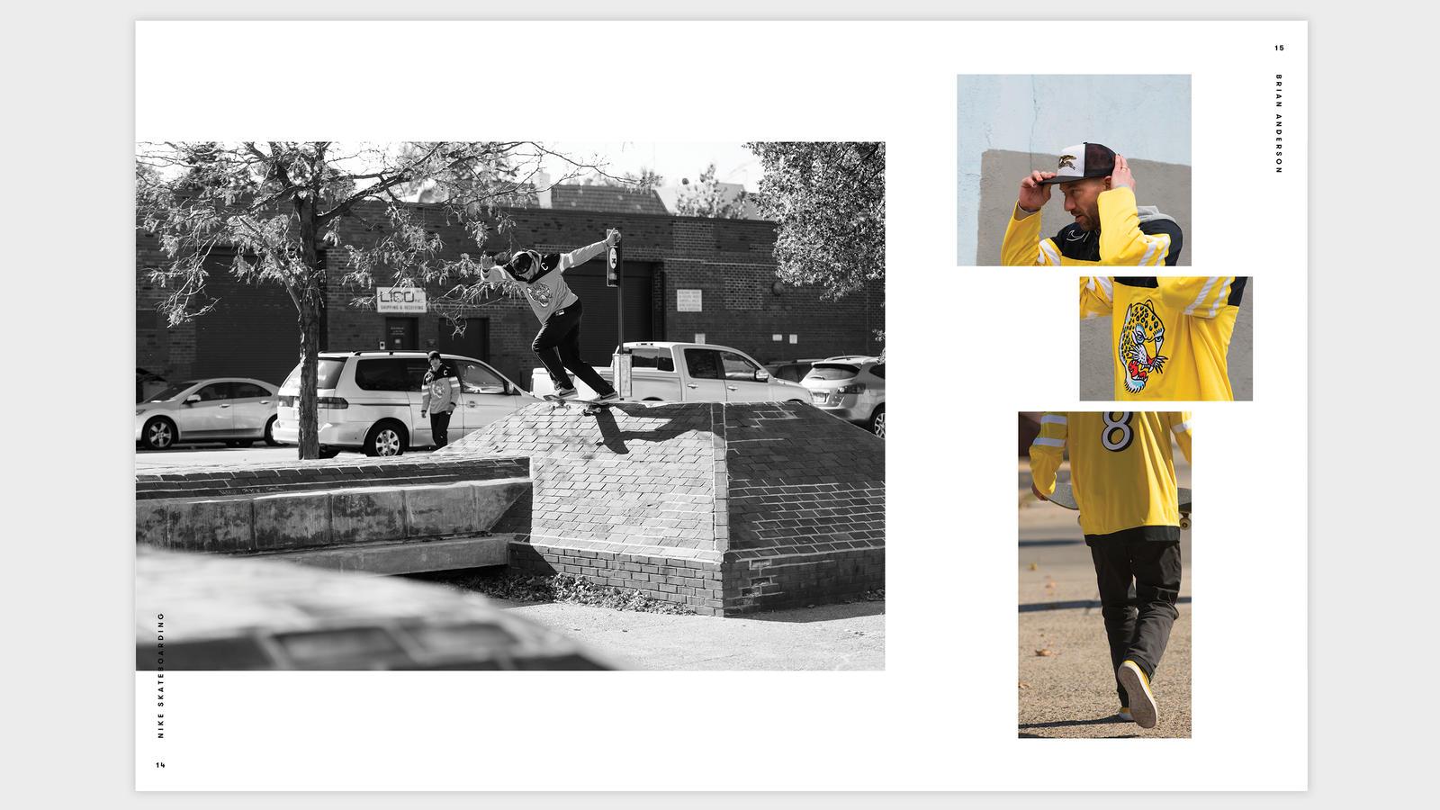 Smalltalk Brian Anderson | Place Skateboard Culture