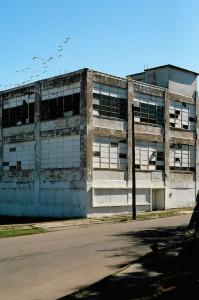Ruine-vögel-detroit